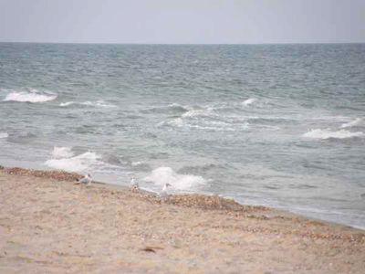 Відпочинок на Чорному морі в Расєйке