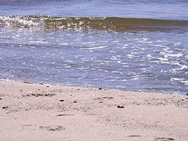 Відпочинок в Лебедівці на Чорному морі