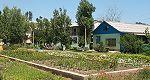 База відпочинку «Економіст» Кароліно-Бугаз - дешевий відпочинок на Чорному морі
