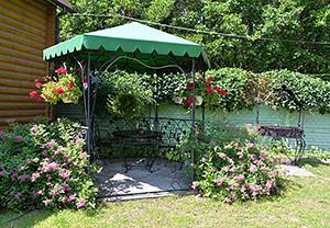 Бази відпочинку Шашкие озера