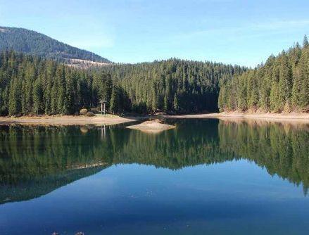 Житло біля озера Синевир, база відпочинку «Кам'янка»