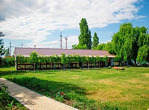 Чорне море відпочинок влітку