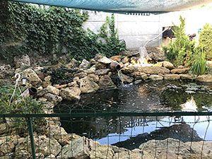 База відпочинку в Лебедівці «Одіссей»