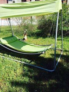 База відпочинку в Грибівці