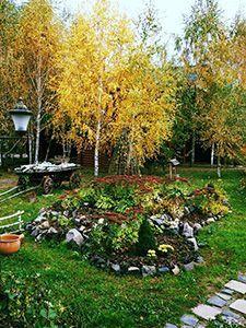 Заміський відпочинок під Черніговом