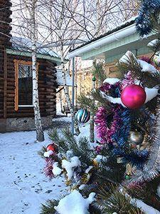 Новий рік у Чернігівській області