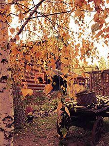 Відпочинок за містом Чернігів