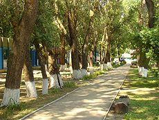 Детский лагерь «Дывосвит», пос. Раздольное (Каланчакский район), корпус