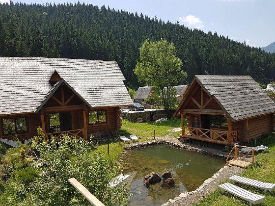 Дом с бассейном в Карпатах