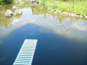 Жилье с бассейном в Карпатах
