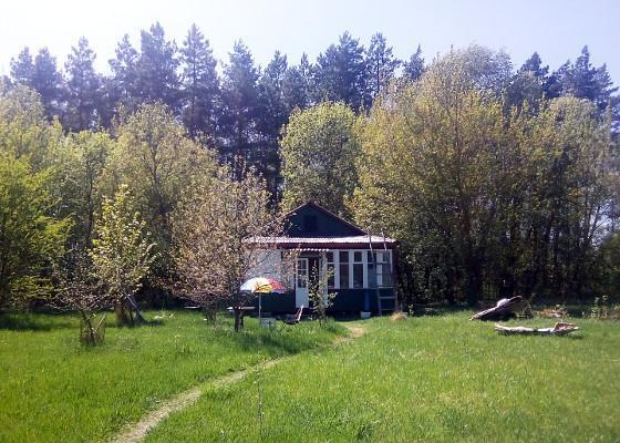 Будинок у Чернігівській області