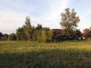 Будинок в оренду Чернігівська область