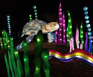 Фестиваль гігантських китайських ліхтарів інсталяції