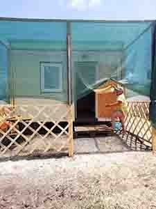 Степанівка 1 приватний сектор гостьовий будинок «Альбіна» територія