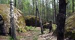 Заказник «Каменное село»