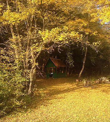 Карпаты дом возле озера