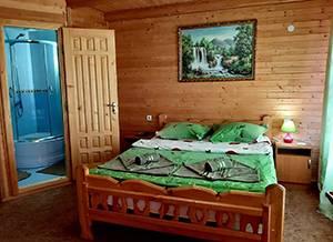 Карпати «Гірська соната» напівлюкс з балконом