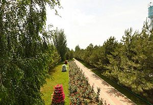 Відпочинок у Приморську Азовське море
