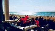 Готелі Затока на пляжі