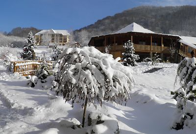 Відпочинок у Карпатах з басейном, готель «Ерней-Лаз», Шаян