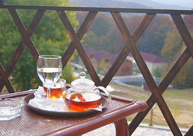 Комфортний відпочинок у Закарпатті, готель «Ерней-Лаз», Шаян