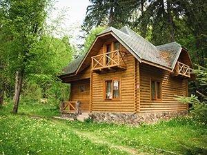 Будиночки в лісі Солотвино