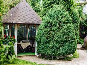готелі в Яремче з басейном