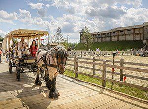 прогулянки по Парку Київська Русь