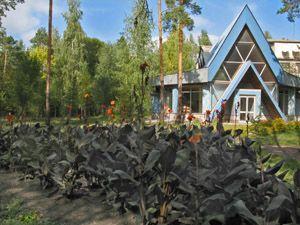 Лікування в Полтавській області