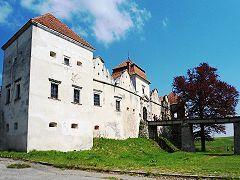 Свірзький замок, в'їзд