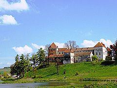 Свірзький замок, вид з боку озера