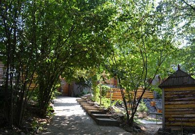 Відпочинок у Карпатах з дітьми, садиба «Лісовий горішок»