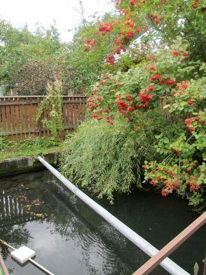 Котедж в Яремче, садиба «Пролісок»