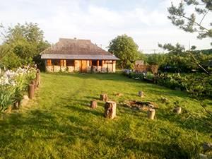 Будиночок в селі